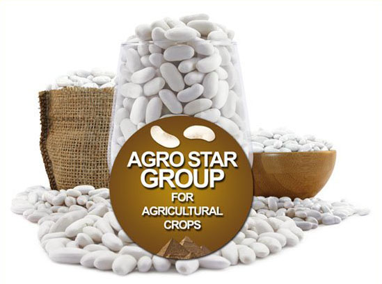 About Agro Star Group